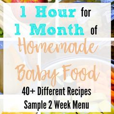 One Hour for One Month's Worth of Homemade Baby Food- Stage 1 Recipes! Wanting to make homemade baby food in one afternoon? Try this strategy to get a months worth of food in one hour with Stage 1 Baby Food Recipes. Baby Food Recipes Stage 1, Baby Food By Age, Freezer Baby Food, Instant Pot Baby Food, Sample Recipe, Baby Food Storage, Food Tags, Baby Puree Recipes, Recipes