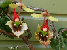 Gnome Children - PDF pattern - Instand download This is one of my older designs, cute Waldorf inspired dolls. These little gnomes like to fly on a Maple leaf with maple wing like a small helicopter. The dolls and leafs are made of wool felt. The little heads are made of tube tricot
