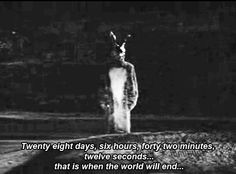 movie creepy horror morbid bunny donnie darko evil world will end Movies And Series, Movies And Tv Shows, Tv Series, Scary Movies, Horror Movies, Good Movies, Awesome Movies, Cult Movies, Katharine Ross