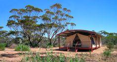Gawler Ranges Wilderness Safaris - Eyre Peninsula - South Australia