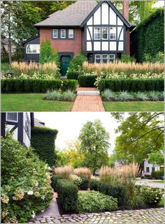 Methods through which You'll be able to Develop Hedges in Your Backyard #interiordesign #interior #design #women #interiordesignideas #homedesign #interiordesigners