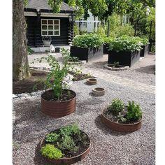 34 Ideas For Garden Landscaping Design Modern Herb Garden Design, Vegetable Garden Design, Garden Landscape Design, Back Gardens, Outdoor Gardens, Rusty Garden, Home Landscaping, Landscaping Design, Garden Pictures