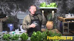 Feb 22, 2015, The Health Ranger reveals the Food Rising Mini-Farm Grow Box at the Health Freedom Expo in Naples, FL. http://foodrising.org/