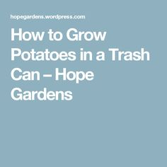 How to Grow Potatoes in a Trash Can – Hope Gardens