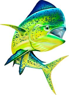 Jumping Mahi Mahi (Dolphin Fish) Illustration Photoshop clipart. http://www.spiritgraphix.com/saltwater-fish-clipart/