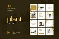 Instagram Puzzle – Plant Post, is a professional, modern and elegant template for your Instagram posts and Gallery. Inspirational Posts, model photography, product Gallery, introduce your brand and more. With this Instagram post template, you can easily improve the quality of your Instagram with a more attractive and professional one. Instagram Banner, New Instagram, Instagram Story, Instagram Posts, User Experience Design, Instagram Post Template, Presentation Slides, Layout Template, Text Color
