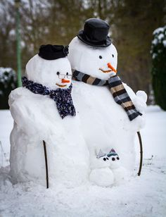 Merry Christmas Everyone Creative