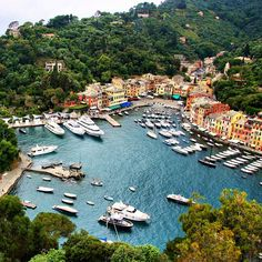 Portofino, Italy... @elaineokane Go there at once. It is the most enchanting place on Earth.