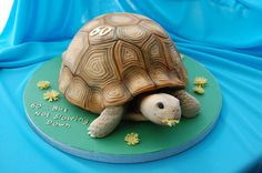 animal cakes online | Turtle Cakes and Cupcakes - Cake It To The Max