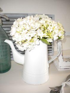hydrangea  blomkjeenwenje.blogspot.com