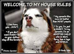 #Husky House Rules true!!!