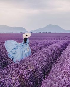 📍Wonderful lavender fields in Provence. A girl in a long blue dress wearing a straw hat. 📍Wonderful lavender fields in Provence. A girl in a long blue dress wearing a straw hat. Lavender Blue, Lavender Flowers, Lavender Fields France, Blue Dresses, Flower Girl Dresses, Valensole, Lavender Aesthetic, Poses Photo, Model Foto
