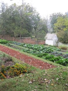 terraced Kitchen Garden