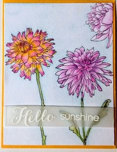 My Love Heart Art Having Fun With The Tim Holtz Flower Garden Stamps Using A Dove Blender Pen