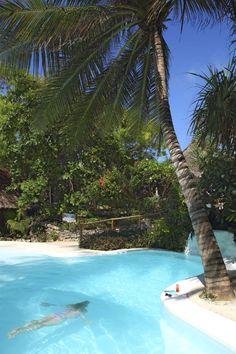 Enjoy a dip in the pool at Matemwe, Zanzibar.  Romance | Honeymoon | Tropical Beach Accommodation