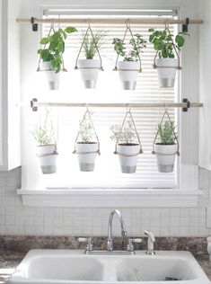 DIY Indoor Hanging Herb Garden // Learn how to make an easy, budget-friendly han. - DIY Indoor Hanging Herb Garden // Learn how to make an easy, budget-friendly hanging herb garden fo - Traditional Curtains, Traditional Windows, Traditional Decor, Container Herb Garden, Herbs Garden, Easy Garden, Garden Web, Diy Herb Garden, Fruit Garden