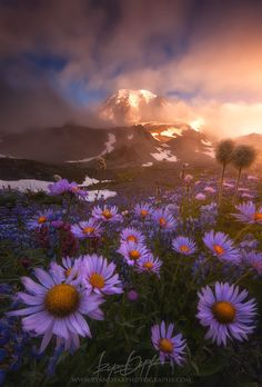 Weather The Storm by Ryan Dyar on 500px