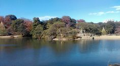 Tokyo's hidden parks