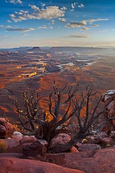 the Colorado River in Canyonlands National Park - As nice as cities can be, nothing beats nature.