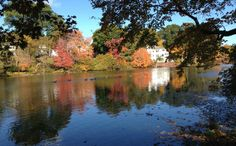 """""""Autumn in Massachusetts""""   Autumn on the Charles River in Newton, Mass.  Sent by: Melissa Marsted via iPhone"""