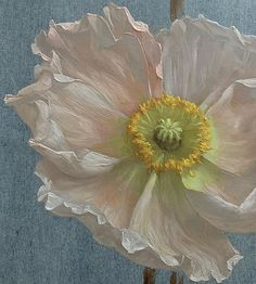 """""""Dead people receive more flowers than the living ones because regret is stronger than gratitude."""" Anne Frank, Katie G. Botanical Illustration, Illustration Art, Plant Painting, Pink Poppies, Renaissance Paintings, Wow Art, Nature Paintings, Flower Art, Canvas Art"""