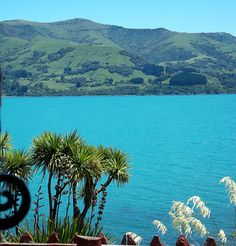 Akaroa, Banks Peninsular, New Zealand Places Ive Been, Places To Go, Long White Cloud, Homeland, Banks, New Zealand, Beaches, Remote, Tourism