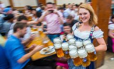 Oktoberfest 2015 - Alle Fakten zum Oktoberfest-Bier