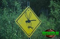 Get a laugh: Beware