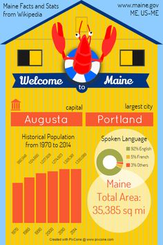PixCone Infographic