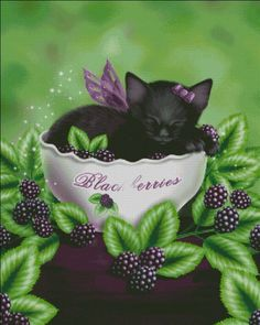Blackberry Kitten [DAWN22355] - $14.25 : Heaven And Earth Designs, cross stitch, cross stitch patterns, counted cross stitch, christmas stockings, counted cross stitch chart, counted cross stitch designs, cross stitching, patterns, cross stitch art, cross stitch books, how to cross stitch, cross stitch needlework, cross stitch websites, cross stitch crafts