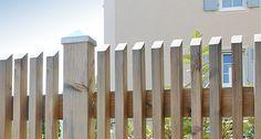 Natural fence or nature protection in Bad Krozingen - Alles über den Garten