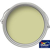 Dulux Kitchen Melon Sorbet - Matt Emulsion Paint - 2.5L