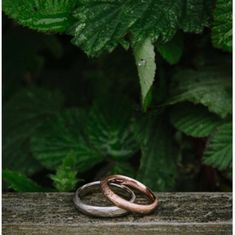 Lily and James's gorgeous sandcast wedding rings made by the anazing Cornish Jeweller Justin Duance 😍 Under a rain drenched leaf at Mount Pleasant Eco Park 🌿🌻 Mount Pleasant, Park Weddings, Free Wedding, Cornwall, Heart Ring, Silver Rings, Rain, Lily, Wedding Photography