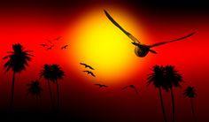 sunsets digital art | Sunset Birds- Digital Art Work