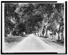 LOOKING DOWN SOUTHERN AVENUE IN TEMPE, ARIZONA 1925 ▓ 008986pr.jpg (640×518)