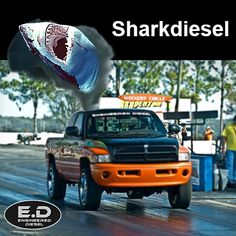 Engineereddiesel meme SharkDiesel vs Sharknado #engineereddiesel #meme #memes #sharknado #sharkdiesel #shark