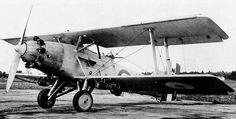 beagle-5.jpg (850×432)