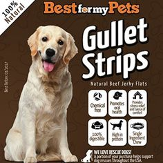 """Best Natural Beef Jerky for Dogs (Gullet Strips) Hand-Inspected & USDA/FDA-Approved Bully Sticks, 6 Oz. Bag - 100% Premium Beef Grain Free Dog Treats, Healthy and Delicious All Natural Dog Chews, Natural Beef Jerky Flats Chews (6 Oz bag of 5-6"""") @ To have more info could be found at the image url. (This is an affiliate link and I receive a commission for the sales)"""