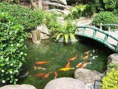 Very nice koi pond installed in South Carolina for a client we did work for in Michigan.