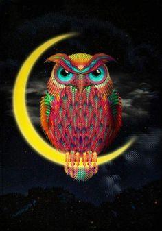 ☮ American Hippie Art ☮ Owl
