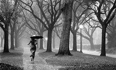 Browse Rain pictures, photos, images, GIFs, and videos on Photobucket Girl In Rain, I Love Rain, Running In The Rain, Walking In The Rain, Woman Running, Black And White Photography Nature, Gif Chuva, Its Raining Its Pouring, Cold Rain