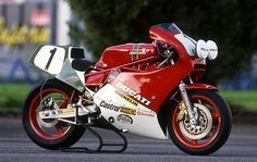 factory Ducati tt1 endurance