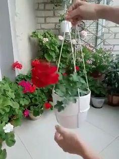 Hanging Plants Outdoor, Hanging Flower Pots, Hanging Succulents, Hanging Planters, Indoor Plants, Fence Plants, Diy Hanging, House Plants Decor, Plant Decor