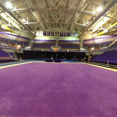 360 of a UW Gymnastics Meet