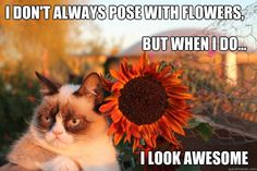 i don't always pose with flowers but when i do i look awesome *