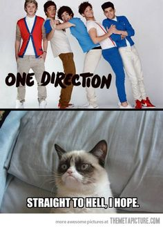 LOL! I whole heartedly agree with grumpy cat