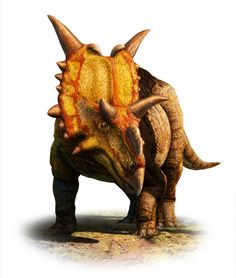 Scientists have named a new species of horned dinosaur (ceratopsian) from Alberta, Canada. Xenoceratops foremostensis (Zee-NO-Sare-ah-tops) was identified from fossils originally collected in 1958. Approximately 20 feet long and weighing more than 2 tons, the newly identified plant-eating dinosaur represents the oldest known large-bodied horned dinosaur from Canada.
