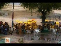 Salinas da Margarida, hoje 20.02.2012