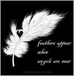 Feathers appear when Angels are near..No doubt about it..