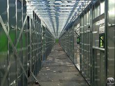 Steel Framing    img_06171.jpg 1,600×1,200 pixels